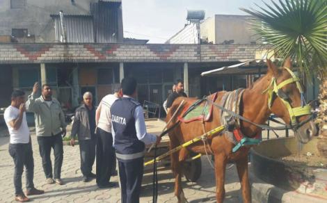 At arabaları  toplanıyor