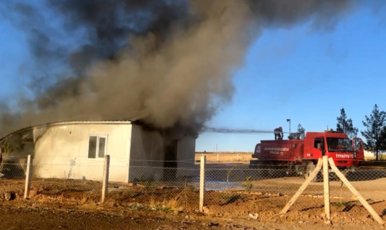 Suruç'ta Korkutan Yangın Urfa Haber
